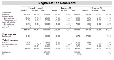 An Example of a Segmentation Scorecard