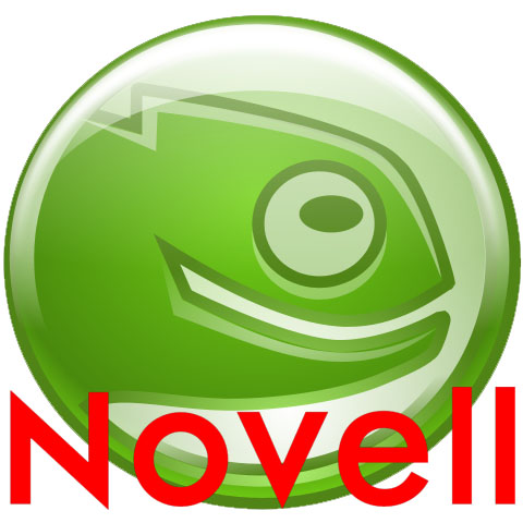 SuSE and Novell - Silicon Strategies Marketing clients